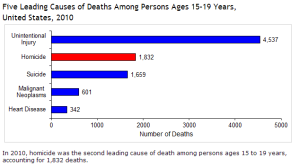 CDC   Five Leading Causes of Deaths Among Persons Ages 15 19 Years   National Statistics   Youth Violence   Violence Prevention   Injury