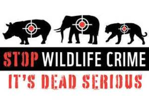 Stop_Wildlife_Crime_08.01.2012_Help